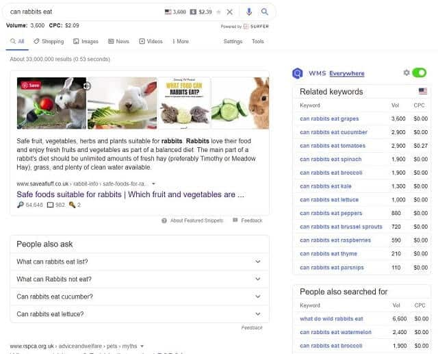 WMS Everywhere search results